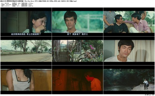 4K.The.Big.Boss.1971.REMASTERED.BD-1080p.X264.AAC.2AUDIO.CHS-UUMp4_preview.jpg