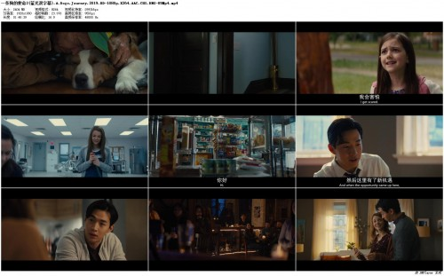 2.A.Dogs.Journey.2019.BD-1080p.X264.AAC.CHS.ENG-UUMp4_preview.jpg