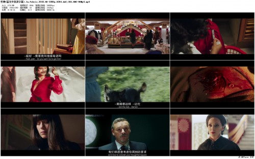 .In.Fabric.2018.BD-1080p.X264.AAC.CHS.ENG-UUMp4_preview.jpg