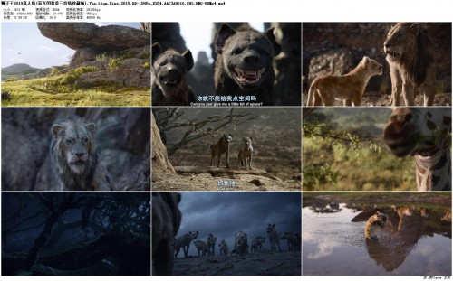 2019.The.Lion.King.2019.BD-1080p.X264.AAC3AUDIO.CHS.ENG-UUMp4_preview.jpg