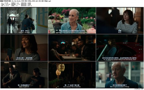 .On.the.Rocks.2020.WEB-1080p.X264.AAC.CHS.ENG-UUMp4_preview.jpg